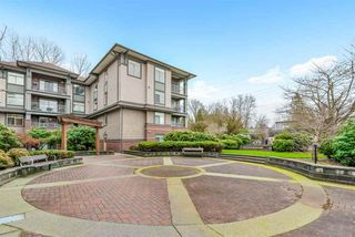 Photo 19: 201 12020 207A Street in Maple Ridge: Northwest Maple Ridge Condo for sale : MLS®# R2478761