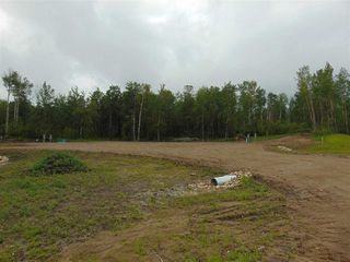 Photo 8: 27331 Township Road 481: Rural Leduc County Rural Land/Vacant Lot for sale : MLS®# E4223342