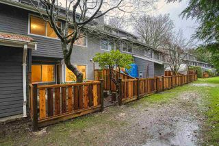 """Photo 24: 3438 COPELAND Avenue in Vancouver: Champlain Heights Townhouse for sale in """"COPELAND AVE"""" (Vancouver East)  : MLS®# R2525749"""