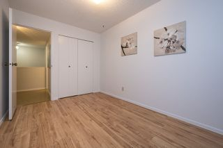 """Photo 18: 3438 COPELAND Avenue in Vancouver: Champlain Heights Townhouse for sale in """"COPELAND AVE"""" (Vancouver East)  : MLS®# R2525749"""