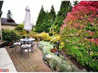 Photo 9: 31792 OLD YALE RD in ABBOTSFORD: House for rent (Abbotsford)