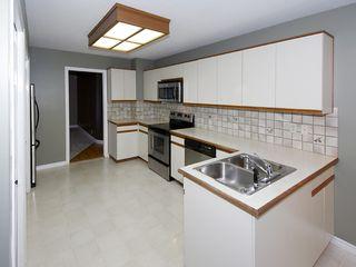 Photo 8: 1288 MALIBU Place in Tsawwassen: Cliff Drive House for sale : MLS®# V1092172