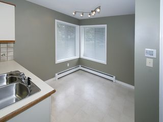 Photo 6: 1288 MALIBU Place in Tsawwassen: Cliff Drive House for sale : MLS®# V1092172