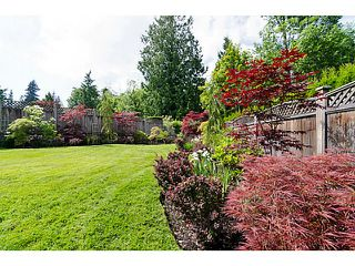 "Photo 19: 15367 N KETTLE Crescent in Surrey: Sullivan Station House for sale in ""SULLIVAN STATION"" : MLS®# F1431191"