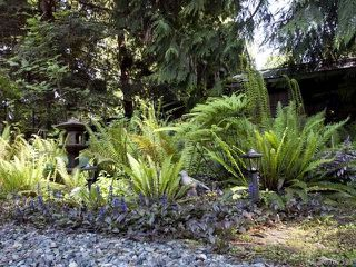 Photo 27: 116 BAYNES DRIVE in FANNY BAY: CV Union Bay/Fanny Bay Manufactured Home for sale (Comox Valley)  : MLS®# 702330