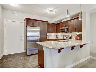 Photo 4: 423 20 ROYAL OAK Plaza NW in Calgary: Royal Oak Condo for sale : MLS®# C4036276