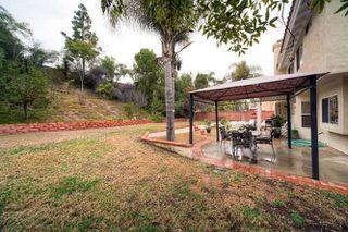 Photo 23: ENCINITAS House for sale : 5 bedrooms : 1424 Wildmeadow Pl