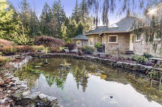 "Photo 19: 2970 138 Street in Surrey: Elgin Chantrell House for sale in ""ELGIN/CHANTRELL"" (South Surrey White Rock)  : MLS®# R2026277"