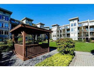 Photo 12: 311 15380 102A Avenue in Surrey: Guildford Condo for sale (North Surrey)  : MLS®# R2045256