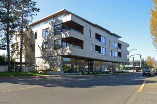Photo 19: 208 1969 Oak Bay Ave in VICTORIA: Vi Fairfield East Condo for sale (Victoria)  : MLS®# 727328