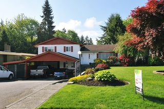 Photo 20: 22116 CANUCK Crescent in Maple Ridge: West Central House for sale : MLS®# R2061368