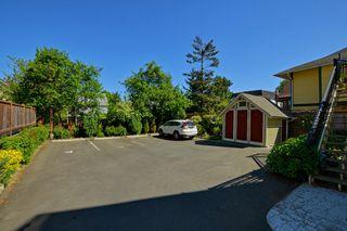 Photo 23: 1 1376 Pandora Ave in VICTORIA: Vi Fernwood Condo for sale (Victoria)  : MLS®# 730224