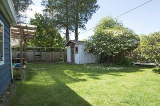 "Photo 13: 1315 FERNWOOD Crescent in North Vancouver: Norgate House for sale in ""Norgate"" : MLS®# R2066595"