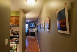 "Photo 6: 110 2390 MCGILL Street in Vancouver: Hastings Condo for sale in ""MCGILL MANOR"" (Vancouver East)  : MLS®# R2074599"