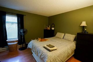"Photo 9: 110 2390 MCGILL Street in Vancouver: Hastings Condo for sale in ""MCGILL MANOR"" (Vancouver East)  : MLS®# R2074599"