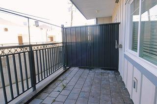 "Photo 9: 104 22363 SELKIRK Avenue in Maple Ridge: West Central Condo for sale in ""CENTRO"" : MLS®# R2077438"