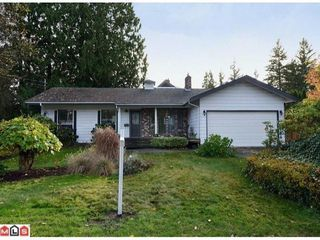 Photo 1: 19694 46TH Ave in Langley: Home for sale : MLS®# F1227030