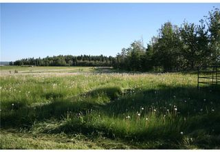 Photo 13: 1 4141 Twp Rd 340: Rural Mountain View County Land for sale : MLS®# C4123214