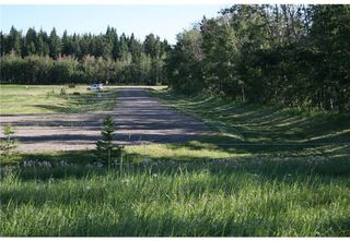 Photo 1: 1 4141 Twp Rd 340: Rural Mountain View County Land for sale : MLS®# C4123214