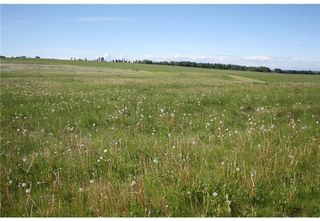 Photo 19: 1 4141 Twp Rd 340: Rural Mountain View County Land for sale : MLS®# C4123214