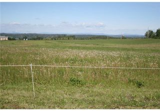 Photo 9: 1 4141 Twp Rd 340: Rural Mountain View County Land for sale : MLS®# C4123214