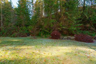"Photo 38: 13420 237A Street in Maple Ridge: Silver Valley House for sale in ""ROCK RIDGE"" : MLS®# R2227077"