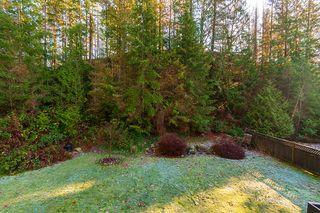 "Photo 35: 13420 237A Street in Maple Ridge: Silver Valley House for sale in ""ROCK RIDGE"" : MLS®# R2227077"