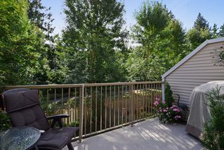 Photo 11: 19 12738 66 Ave in Surrey: Home for sale : MLS®# F1319100