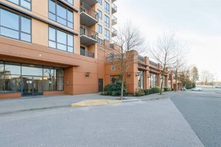 Photo 14: 403 511 ROCHESTER Avenue in Coquitlam: Coquitlam West Condo for sale : MLS®# R2245552