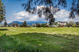 Photo 16: 20925 ALPINE Crescent in Maple Ridge: Northwest Maple Ridge House for sale : MLS®# R2262965