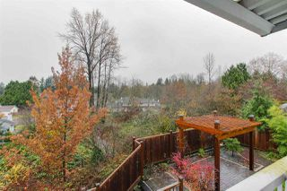 Photo 13: 22839 125A Avenue in Maple Ridge: East Central House for sale : MLS®# R2302916