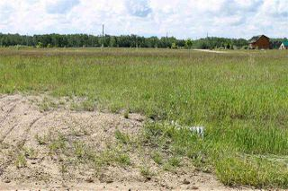 Photo 13: 1613 Feltham Drive Road: Rural Camrose County Rural Land/Vacant Lot for sale : MLS®# E4136556