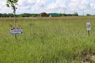 Photo 4: 1613 Feltham Drive Road: Rural Camrose County Rural Land/Vacant Lot for sale : MLS®# E4136556