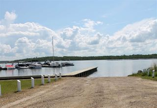 Photo 9: 1613 Feltham Drive Road: Rural Camrose County Rural Land/Vacant Lot for sale : MLS®# E4136556