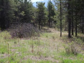 Photo 1: 3550 33 Highway in No City Value: FVREB Out of Town Land for sale : MLS®# R2341082