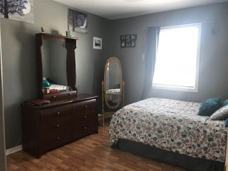 Photo 20: 116 Green Hill Road in Alma: 108-Rural Pictou County Residential for sale (Northern Region)  : MLS®# 201903360