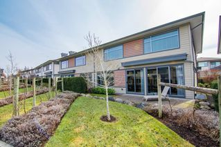 "Photo 19: 67 2603 162 Street in Surrey: Grandview Surrey Townhouse for sale in ""Vinterra"" (South Surrey White Rock)  : MLS®# R2348771"