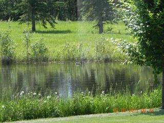 Photo 43: 662071 RGE RD 13: Rural Lesser Slave River M.D. House for sale : MLS®# E4148237