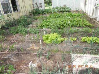 Photo 21: 662071 RGE RD 13: Rural Lesser Slave River M.D. House for sale : MLS®# E4148237
