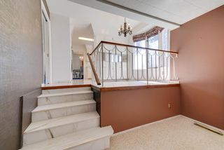 Photo 12: 32 VALLEYVIEW Crescent in Edmonton: Zone 10 House for sale : MLS®# E4150307