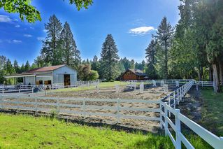 Photo 18: 25517 73 Avenue in Langley: County Line Glen Valley House for sale : MLS®# R2374301