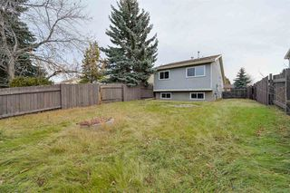 Photo 13: 2010 53 Street in Edmonton: Zone 29 House for sale : MLS®# E4178704