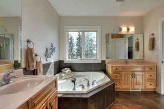 Photo 23: 650 48057 RGE RD 272: Rural Leduc County House for sale : MLS®# E4188884