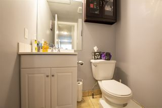 Photo 6: 12014 69 Street in Edmonton: Zone 06 House Fourplex for sale : MLS®# E4203227