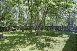 Photo 22: 14301 101 Avenue in Edmonton: Zone 21 House for sale : MLS®# E4205992
