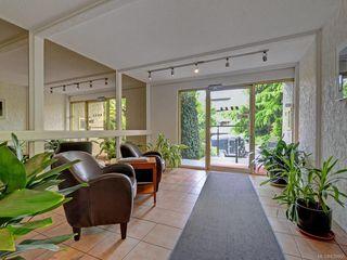 Photo 19: 203 1235 Johnson St in Victoria: Vi Downtown Condo for sale : MLS®# 839866