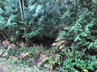 Photo 4: 5797 MARINE Way in Sechelt: Sechelt District Land for sale (Sunshine Coast)  : MLS®# R2507558