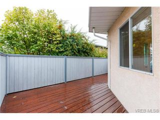 Photo 15: 515 Broadway St in VICTORIA: SW Glanford Single Family Detached for sale (Saanich West)  : MLS®# 712844
