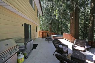 Photo 17: 5001 204TH Street in Langley: Langley City House for sale : MLS®# R2067129