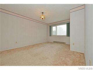 Photo 13: 1550 Pearl St in VICTORIA: Vi Hillside House for sale (Victoria)  : MLS®# 746344